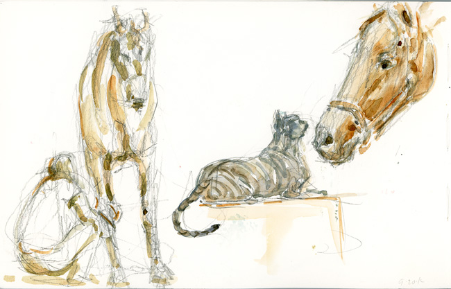 Barn sketches