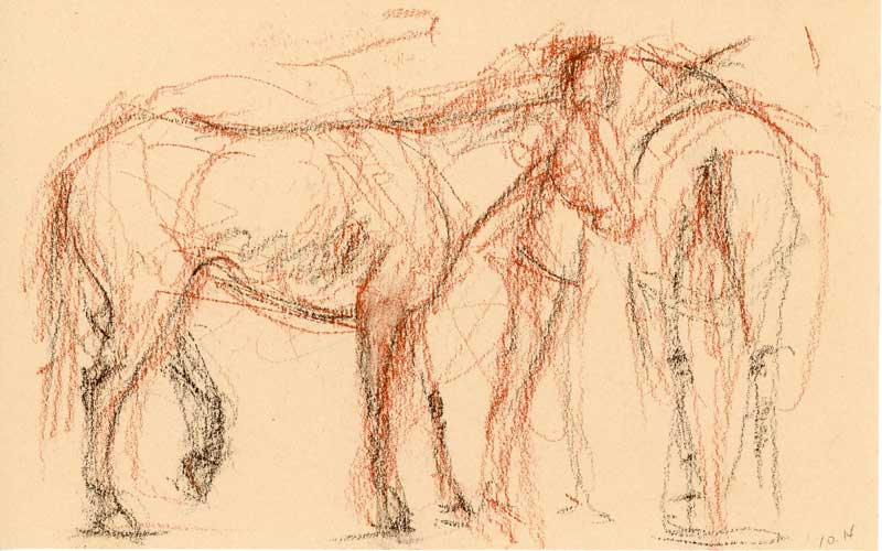 Erin O'Toole horse sketch.