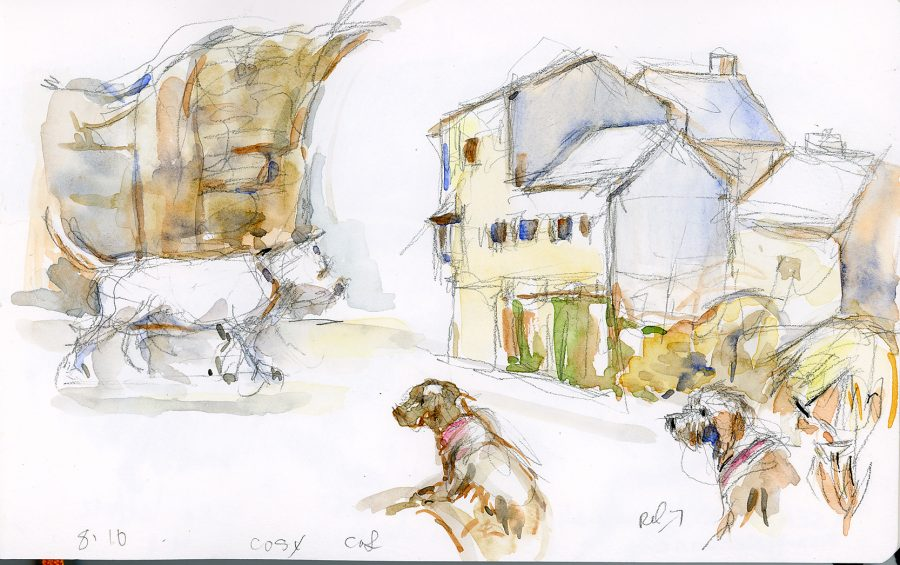 drawing of dogs in Kinsale by Erin O'Toole